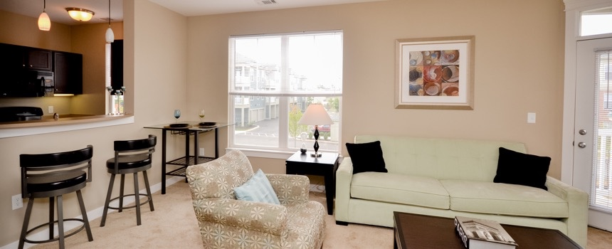 The District at Saxony Apartment Homes in Fishers model living room
